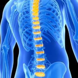 Pressão na região cervical ou lombar? Pode ser estenose vertebral