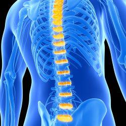 Fisioterapia Especializada em Coluna x Fisioterapia Convencional